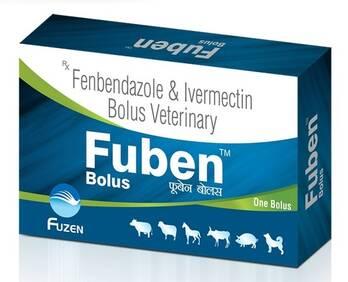 FUBEN Bolus