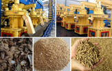 Feeding Work of FTM Straw Pellet Machine