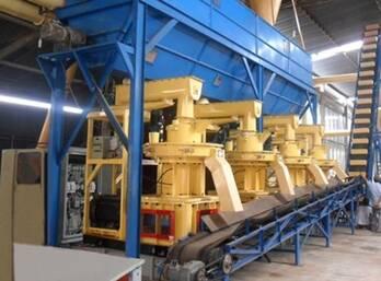 Analysis on Die Deformation of Sawdust Pellet Mill