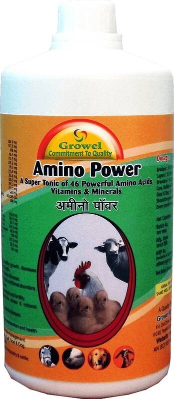 Powerful Amino Acids,Vitamins & Minerals for Poultry