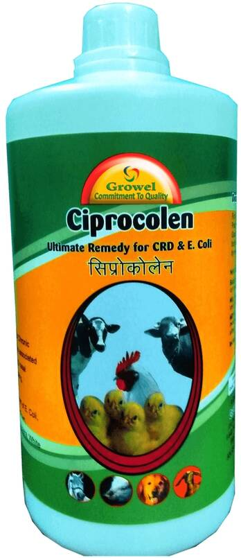 Powerful CRD & E Coli Medicine for Poultry