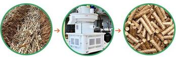 What Are the Key Parts in Ring Die Pellet Mill?