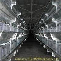 poultry farm design_shandong tobetter Professional integrity