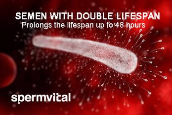 SpermVital
