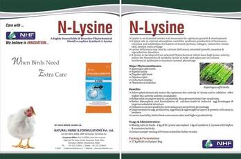 N-Lysine