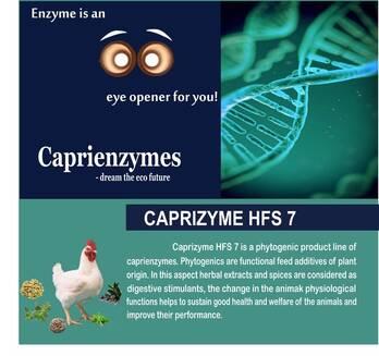 Caprizyme HFS 7