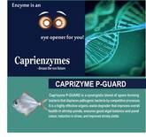 CAPRIZYME P-GUARD
