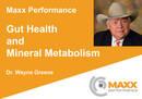 Gut Health and Mineral Metabolism - Dr. Wayne Greene