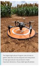 Digital agriculture connects dots for crop improvement