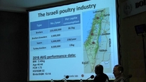 Udi Ashash talks about avian influenza outbreaks and vaccines in Israel