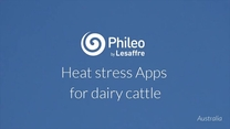 Heat stress Apps for dairy cattle