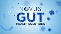 Novus Gut Health Solutions