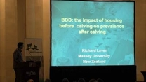 BDD: the impact of housing before calving on prevalence after calving