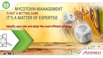 Mycotoxin Management - Forecast crop contamination