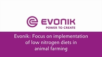 Focus on implementation of low nitrogen diets in animal farming