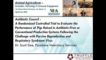 A Randomized Controlled Trial to Evaluate the Performance of Pigs Raised in AB-Free or Conventional System after PRRS Challenge