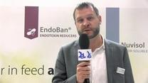 Combating Endotoxins in animal species