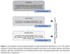 Mycotoxins - Adsorbents, binders, tests