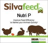 Silvafeed® Nutri P