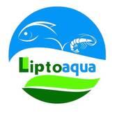 Liptofry