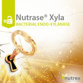 NUTRASE XYLA