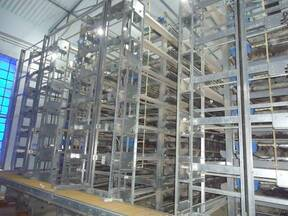 Battery Cages 8Tiers 3 Rows first time in india