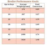 broiler performance goal