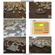 Overview of bird weighing systems