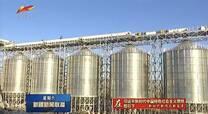 Jingang bulk grain railway conveying project