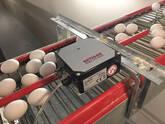 ECM-30 Egg counter