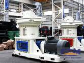 Remarkable Fruits on Developing Wood Pellet Mill