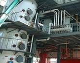 Offer Sunflower Oil Extraction Machine with Latest and Advance Technology