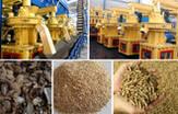 Feeding Work of FTM Straw Pellet Machine