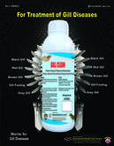 GILL CLEAN FOR PREVENTION OF ALL TYPES OF GILL DISEASES IN VANNAMEI SHRIMPS-IHCL- PVS GROUP