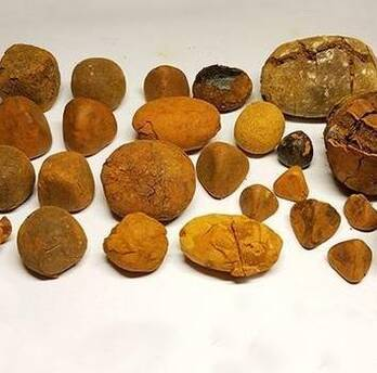 High Grade Ox Gallstones 80/20 Cow,ox,cattle Gallstones for sale